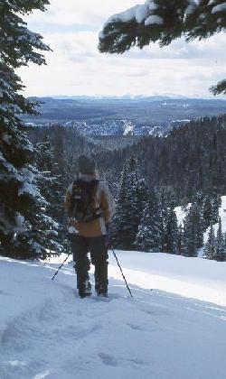 A snowshoer views the canyon from Dunraven Pass